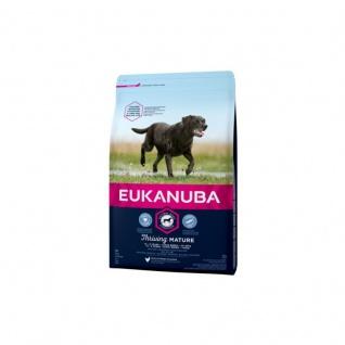 Eukanuba Mature & Senior Große Rassen / Large