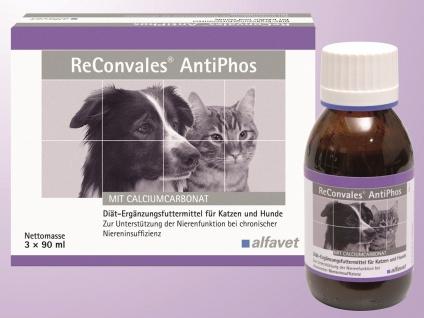 ReConvales AntiPhos Energetikum für Hunde und Katzen