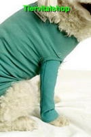 Dog & Cat Body Beinschutz