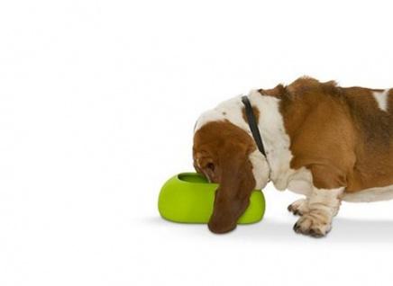 Buster IncrediBowl Futternapf für langohrige Hunde