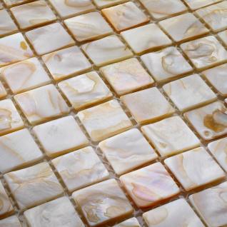 Perlmutt Mosaik Shell Bunt 30x30cm