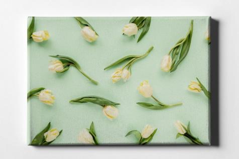 Tulpen Muster Leinwand L0071