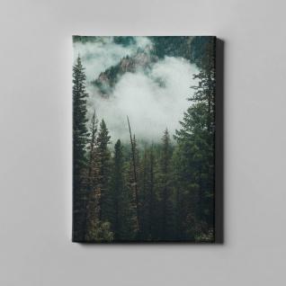 Wald Gebirge Bäume Wolken Landschaft Leinwand L0366