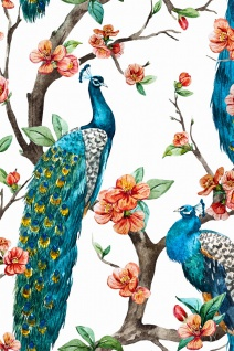 Pfau Baum Illustration Kunstdruck Poster P0318