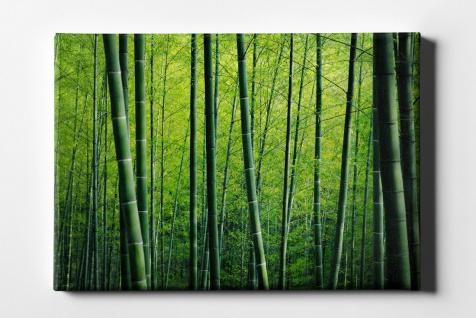 Bambus Wald Leinwand L0149