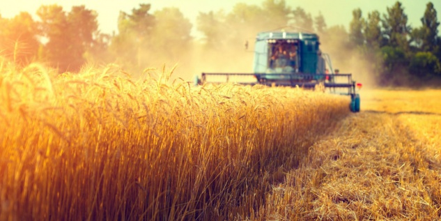 Mähdrescher Ernte Feld Landwirtschaft Tasse T0836 - Vorschau 2