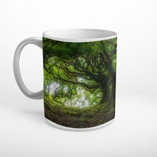 Wald Bäume Natur Tasse T2300
