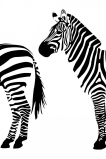 Zebra Illustration Kunstdruck Poster P0319