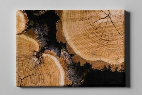 Holzschnitt Stämme Rinde im Fokus Leinwand L0208