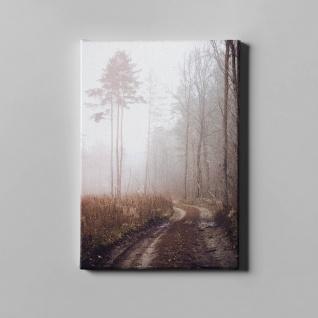 Waldweg Bäume Herbst Winter Landschaft Leinwand L0371
