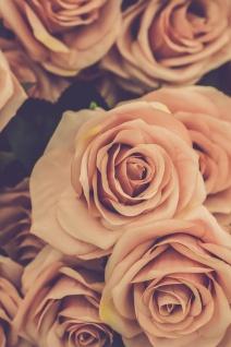 Rosen Blüten Vintage Kunstdruck Poster P0323