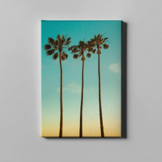 Palmen Himmel Natur Leinwand L0356