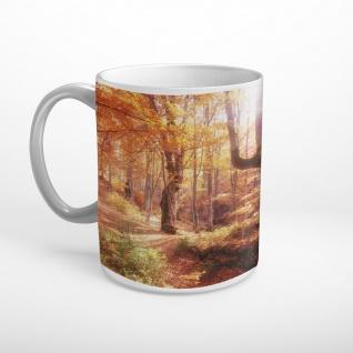 Herbst Wald Sonne Bäume XXL Panorama Wandtattoo Bild Poster Aufkleber W0051