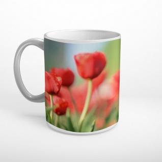 Tulpen Rot Blumenwiese Blumen Tasse T1883