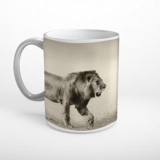 Löwe Savanne Afrika Tasse T0356