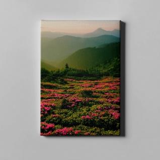 Blumenwiese Gebirge Berge Wald Landschaft Leinwand L0368