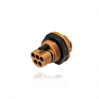 Stecker für Gehäuse Wand fünfpolig Wieland RST20i5 signalbraun Geräteanschluss