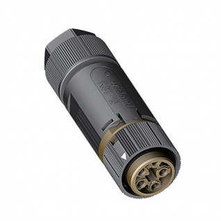 Wieland Buchse 5 polig Female RST mini RST16I5 Verschaltung IP69 7, 1-13mm schw.