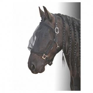 Harry/'s Horse Stiefelschaft Glamour