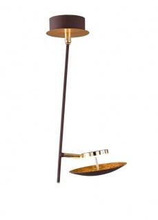 Wofi LED Deckenlampe SALEM goldfarbig 1 flg.