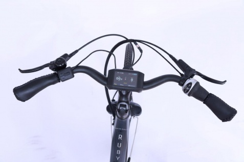 Marktneuheit 2021 Ruby E-Bike Elektro Fahrrad bis zu 150 km Pedelec 28 Zoll 25km/h Elektrorad Citybike - Vorschau 5