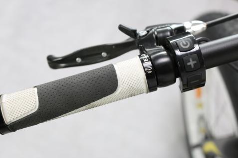 Marktneuheit 2021 BigApple E-Bike Elektro Fahrrad bis zu 150 km Pedelec 28 Zoll 25km/h Elektrorad Citybike - Vorschau 4