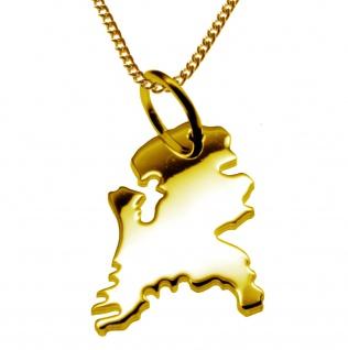 50cm Halskette + Holland Anhänger in 585 Gelbgold