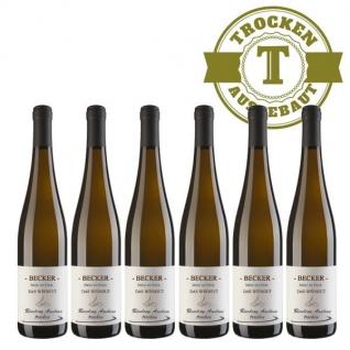 Weißwein Rheinhessen Riesling Weingut Becker Auslese trocken ( 6 x 0, 75 l)