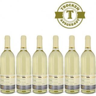 Weißwein Nahe Riesling Weingut Roland Mees Kreuznacher Paradies trocken (6x0, 75l)