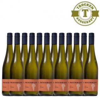 Weißwein Rheinhessen Riesling Weingut Dackermann Gutswein trocken (12 x 0, 75 l)