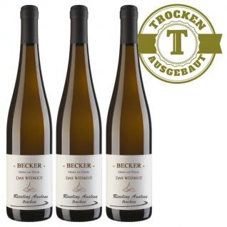 Weißwein Rheinhessen Riesling Weingut Becker Auslese trocken ( 3 x 0, 75 l)