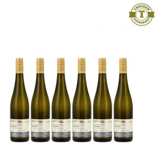 Weißwein Nahe Riesling Weingut Roland Mees Nahe Kreuznacher Paradies feinherb (6 x 0, 75l)