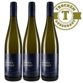 Weißwein Rheinhessen Silvaner Weingut Dackermann Hesslocher Ortswein trocken ( 3 x 0, 75 l)