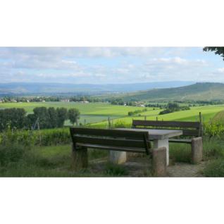 Weißwein Nahe Riesling Weingut Roland Mees Kreuznacher Paradies halbtrocken (12x0, 75l) - Vorschau 4