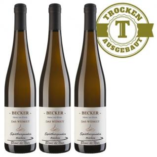 Weißwein Rheinhessen Spätburgunder Blanc de Noir Weingut Becker trocken (3 x 0, 75l)