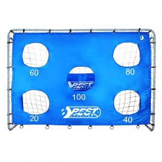 Best Sporting Fußballtor grau 240 x 170 x 85 cm mit blauer Torwand mit Schusslöchern