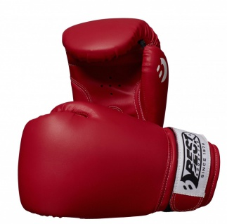 Best Sporting Boxhandschuh PROFESSIONAL, 8-10-12-14 oz, rot