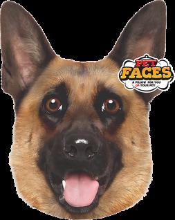 Haustiere gegenüber dem deutschen Schäferhund