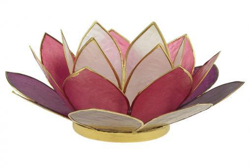 Lotus Teelichthalter TRICOLOR berry 14cm, Capiz