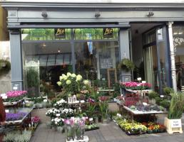 Flower Shop in Reutlingen