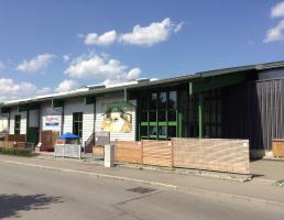 Holz Braun in Reutlingen