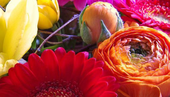 Blumen-Kunst-Werkstatt in Lauf an der Pegnitz Impression
