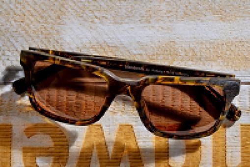 blendwerk Sonnenbrillen ab