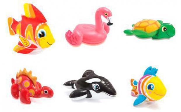 Badewannentierchen in 9 verschiedenen Arten