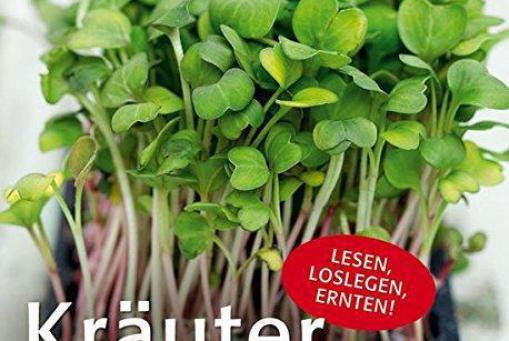 Kräuter- Das Grüner- Daumen Konzept
