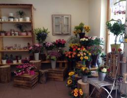 Blumen Wendler in Lauf an der Pegnitz