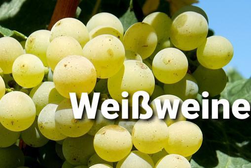 Es folgt ein Teil unseres Angebotes ausgewählter Weißweine.