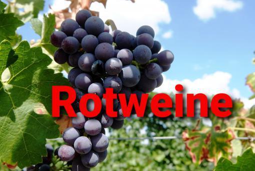 Teile aus unserem Rotweinsortiment