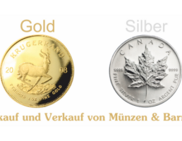 Meine Gold-Burg in Regensburg