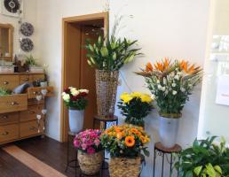 Blütenreich in Rückersdorf